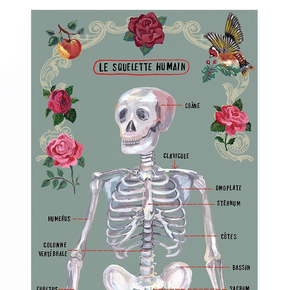 papier peint 39 le squelette humain 39 gris domestic d coration smallable. Black Bedroom Furniture Sets. Home Design Ideas