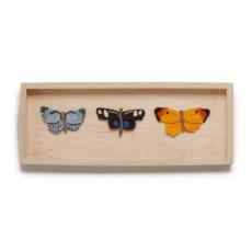 Cadre Papillons x 3 Multicolore