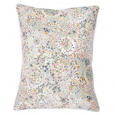 Coussin Multicolore