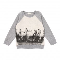 Sweat Chevaux - Gris chiné