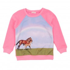 Sweat Chevaux Arc En Ciel