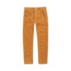 Pantalon Skinny Velours Vinata Ocre