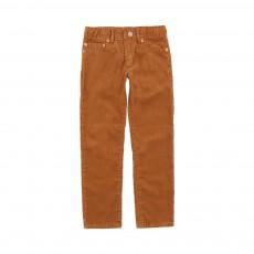 Pantalon Velours Vedano Camel