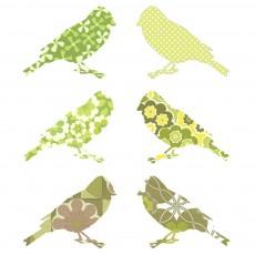 Stickers Oiseaux - Vert