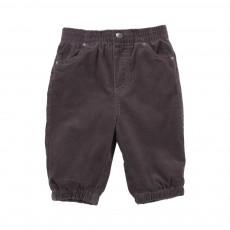 Pantalon Velours Pipkin Gris