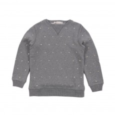 Sweat Cœurs Dove Gris