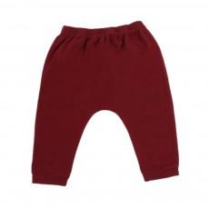 Pantalon Jersey Bébé  Bordeaux