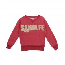 """Sweat """"Santa Fe"""" Mosix Rouge brique"""