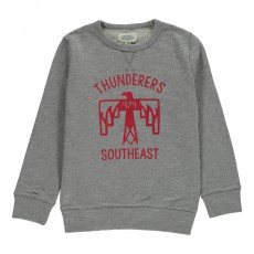 """Sweat """"Thunderers Southeast"""" Gris"""
