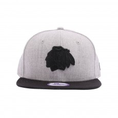 Casquette Snapback Ajustable  Team Tone Chicago 9FIFTY Gris