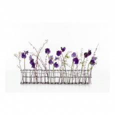 Vase d'avril- Transparent