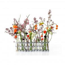 Vase d'avril grand format Transparent