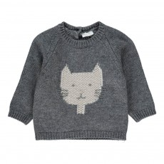 Pull  Chat Gris anthracite