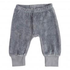 Jogger Velours Bleu gris