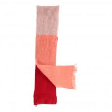 Echarpe Tricolore Mohair Fan Rouge cerise