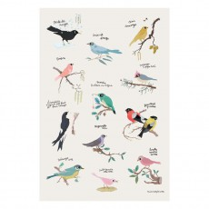 Poster oiseaux Tinou Le Joly Sénoville
