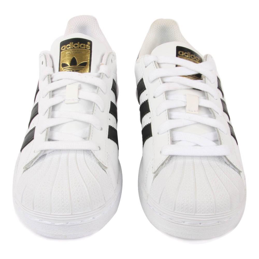 cordones adidas superstar blancos