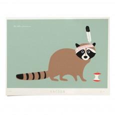 Affiche Raton laveur 40x30 cm édition limitée Vert