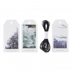Etiquettes cadeaux nature avec ficelle - Set de 12 Multicolore