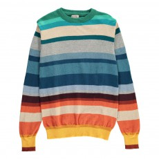 Pull Rayé Larry Multicolore
