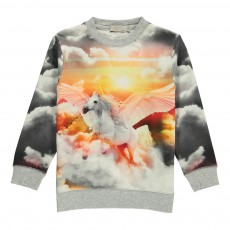 Sweat Cheval Ailé Betty Gris chiné