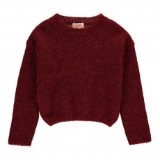 Pull Mohair Grace Bordeaux