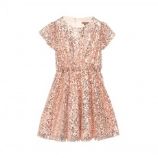 Robe Sequins Glisten Rose