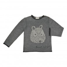 Pull Ours Gris