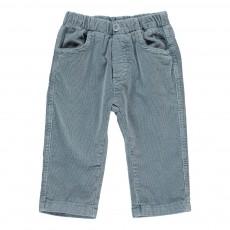 Pantalon Velours Bleu gris