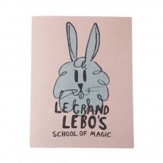 Livre Le Grand Le Bo's Rose pâle