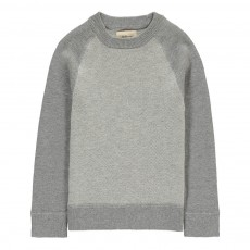 Pull Bicolore Golford Gris