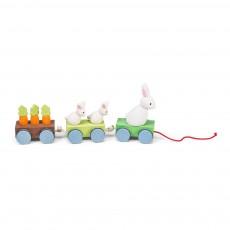 Le train de la famille lapin Multicolore