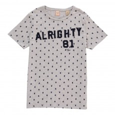"T-Shirt ""Alrighty 81"" Flèches Gris clair"