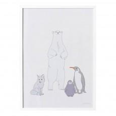 Affiche Famille polaire 50x70 cm Multicolore