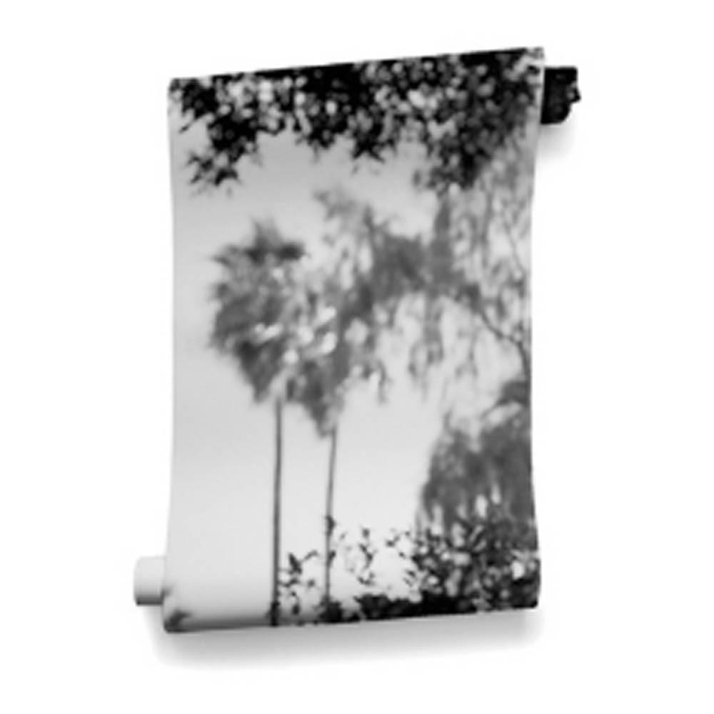 papier peint palermo 364x280 cm 4 l s noir bien fait. Black Bedroom Furniture Sets. Home Design Ideas