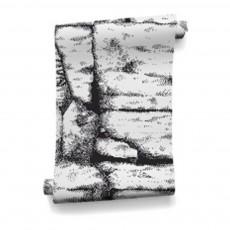 Papier-peint The Cave 364x280 cm - 4 lés Noir