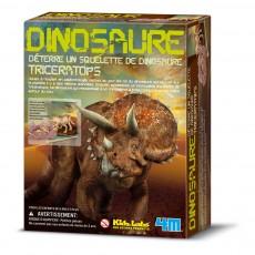 Kit déterre ton dinosaure Tricératops Multicolore