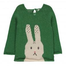 Pull Baby Alpaga Lapin Vert