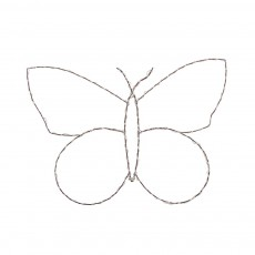 Papillon lumineux Naturel