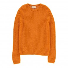 Pull Mohair Alpaga Côtes Apple Orange