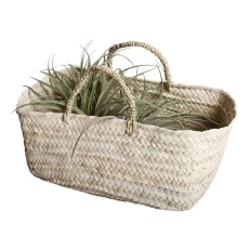 product-Cosydar Basket in palm leaf