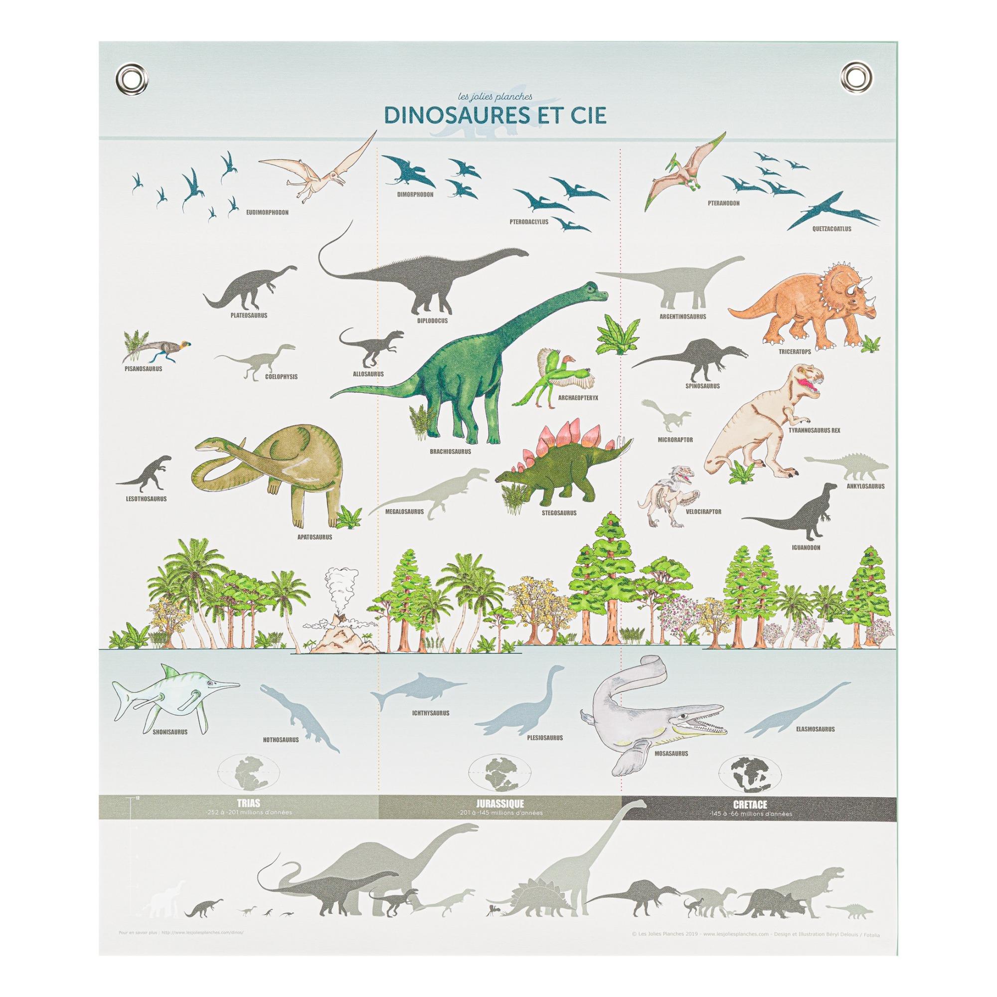 Nice: Bildtafel Dinosaurier Co. 70x80 cm