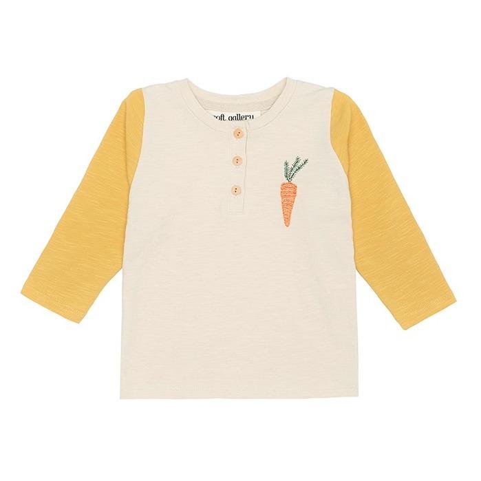 T-shirt Fieldy Coton Bio