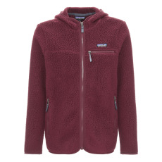 product-Patagonia Retro Fleece Hoodie - Adult Collection
