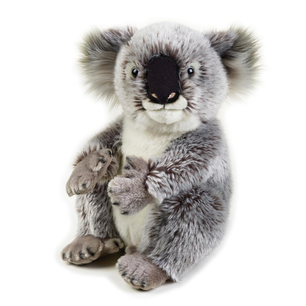 National Geographic - Peluche koala 26 cm - Gris