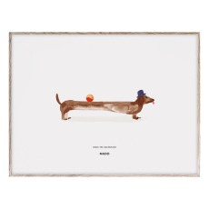 product-Mado Poster Doug the Dachshund 40x30 cm